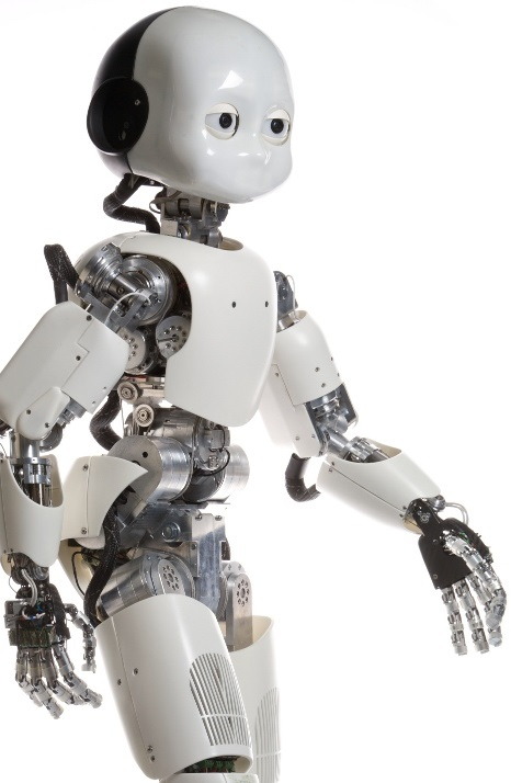 The iCub humanoid robot